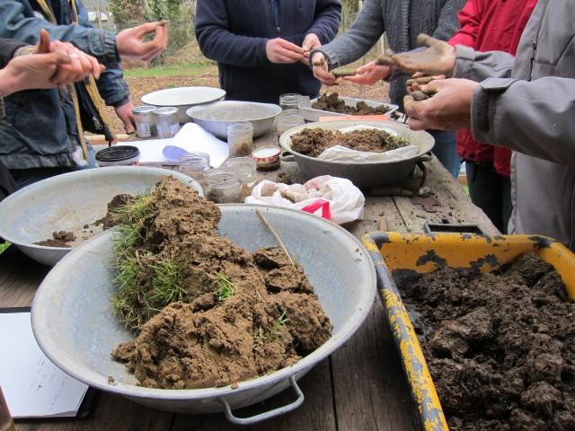 examen des mottes de terre apportées par les stagiaires
