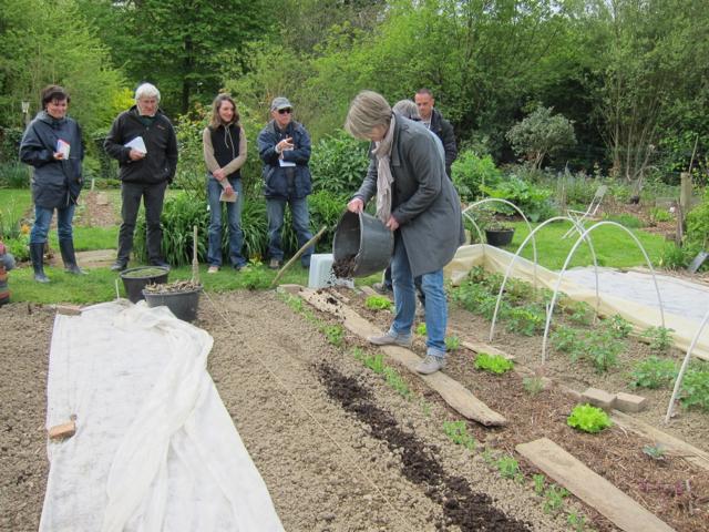 Apport de compost en surface, avant des cultures gourmandes