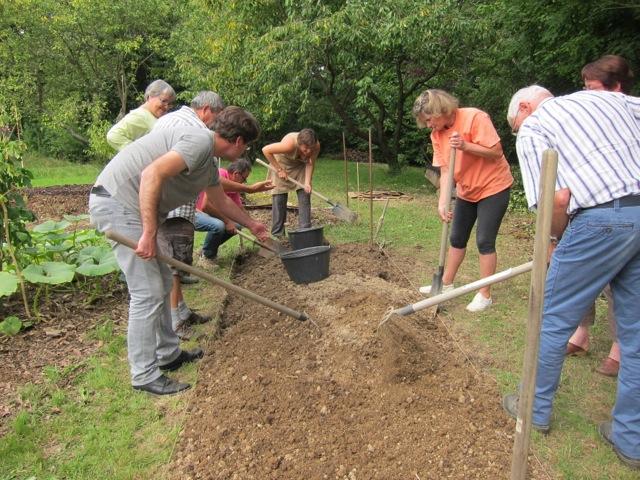 Préparation de la terre pour les semis et plantation de fin d'été