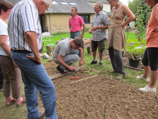 Plantation de scaroles d'automne, semis d'épinards, radis, mâche...